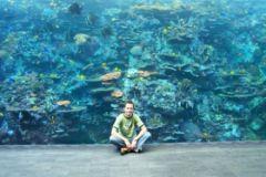 w Georgia Aquarium - rafa koralowa