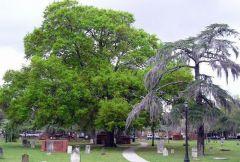 cmentarz w Savannah - GA
