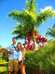 Roślinność na Maui
