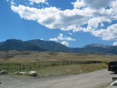 Yellowstone Park - MT