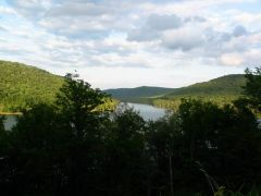 Allegheny National Forest - NW PA