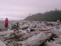 wybrzeże Pacyfinku