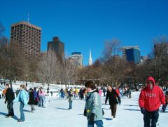Boston-FrogPond