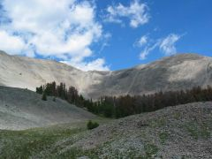 Yellowstone Park - Avalanche Mt