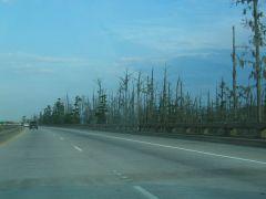 bagna po drodze LA