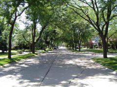 Ulica na przedmieściach