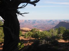 Canyonlands - UT