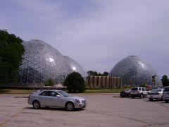 Mitchell s Dome - palmiarnie