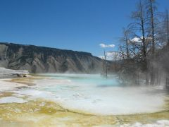 Yellowstone Park - Mammoth Hot Springs