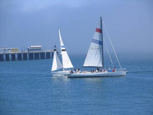 Jachty na zatoce Monterey
