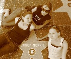 LA - hollywood blvd