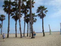 Vanice Beach