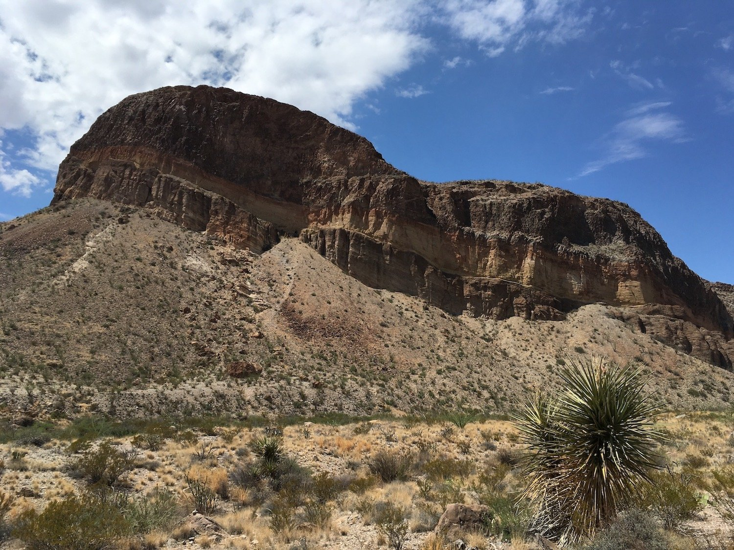 Burro Mesa, Big Bend NP